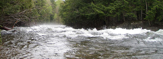 Grand Lake Stream flow