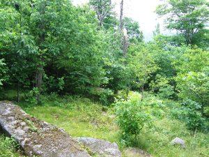 Wabassus Mountain